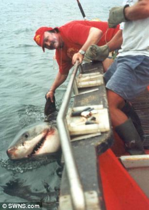 Extreme fisherman Mr Gregorek landed a 1300lb Great White Shark off the coast of South Africa in 2000