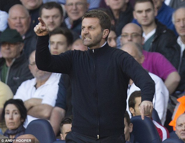 Frustrated figure: Tottenham boss Tim Sherwood shouts instructions to his players during the opening period