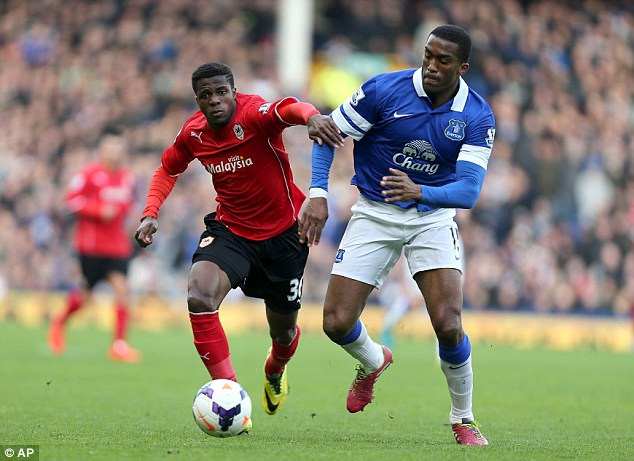 Mixed feelings: Everton defender Sylvain Distin (right) has admitted that Europa League qualification could make for a tough but enjoyable 2014/15 season
