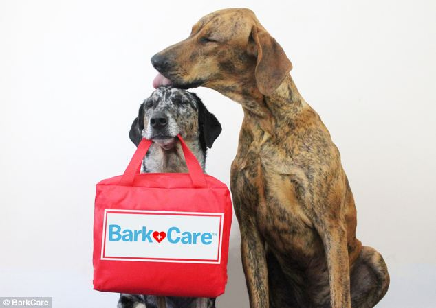 Home visits: Bark & Co. found that 85 per cent of vet visits could actually be handled in the comfort of your own home, including 'wellness visits,' vaccinations and prescriptions