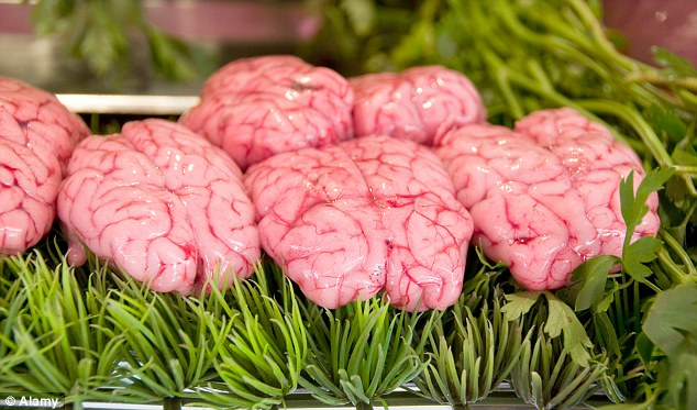 Egyptian delicacy: 420 pounds of cows' brains were seized at Cairo's International Airport in 2012