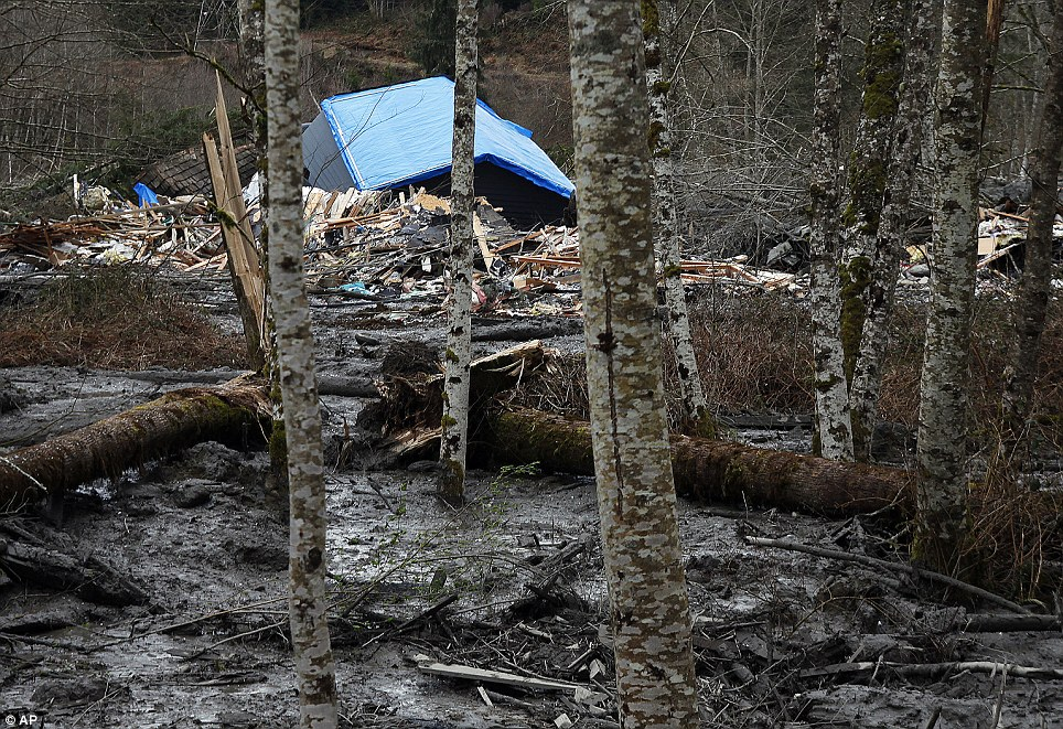 Splintered: One of the homes  brought down by the fatal mudslide