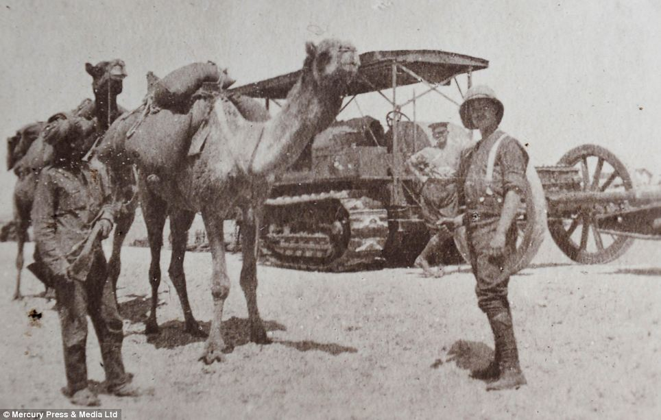 Alternative transport: A tank towing a field gun alongside an Indian soldier and his camel in around 1917