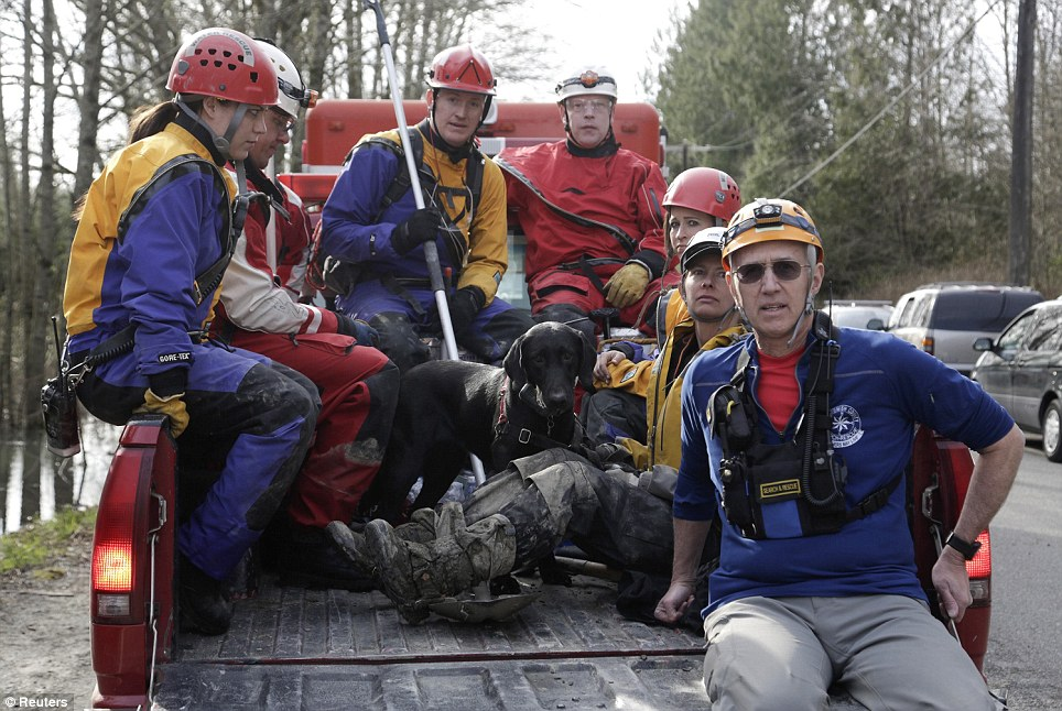 Intensive: Rescue workers and a search dog head out to continue searching for missing people caught in a massive landslide along Highway 530 near Darrington, Washington March 24, 2014