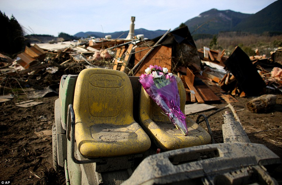 Tribute: A bouquet of flowers left for victims sits perched on the seat of an abandoned vehicle in the wreckage of homes destroyed by Saturday's mudslide, Monday, March 24, 2014, near Oso, Washington
