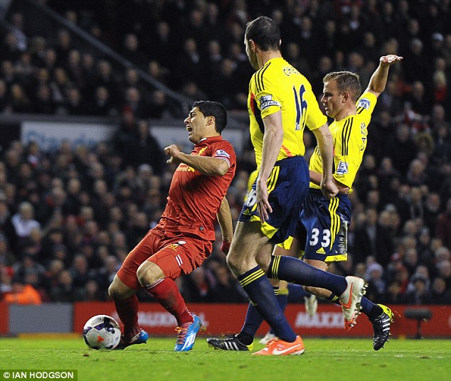 Going down: Luis Suarez is brought down by Lee Cattermole but referee Kevin Friend waved away the penalty appeals