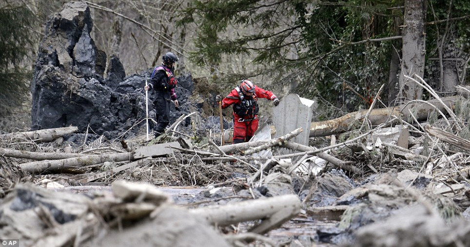 Painstaking: Searchers slowly move through a field of debris following Tuesday's deadly landslide that left an estimated 24 people dead with dozens still missing