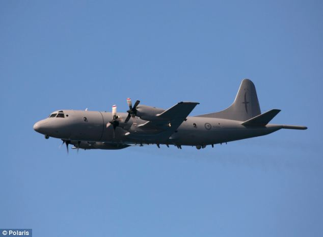 In a statement Amsa said a Royal New Zealand Air Force reported sighting a 'number of objects white or light in colour'