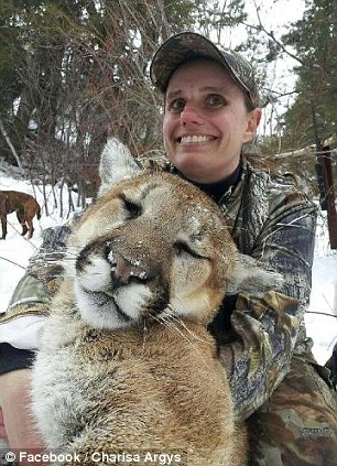 Huntress: Charisa Argys and the 175-pound male mountain lion she shot out of a tree while hunting in Colorado in February 2013