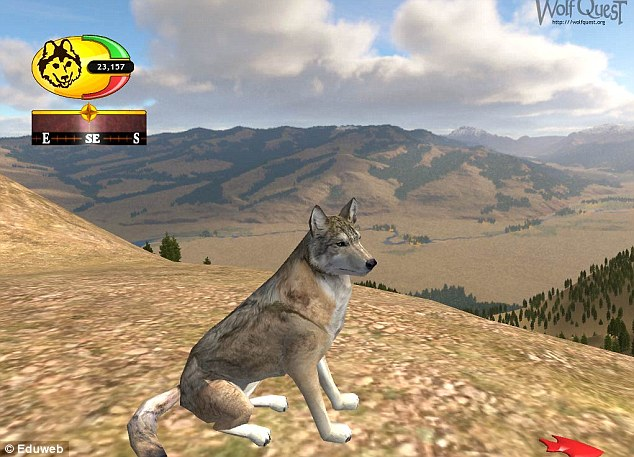 WolfQuest, pictured, was created by the Minnesota Zoo and game developer Eduweb in 2007. It was set up to help players understand wolves and the roles they play in nature by playing as a grey wolf. WolfQuest challenges players to learn about wolf ecology by living the life of a wild wolf in Yellowstone National Park