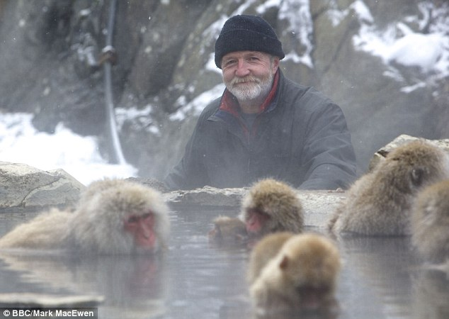 Monkey Planet, is BBC1's outstanding new three-part nature series. Introduced by George McGavin (pictured)