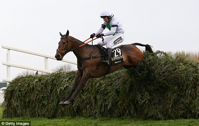 What a performance: Pineau De Re proved a winner for the bookies as he defied 25-1 odds