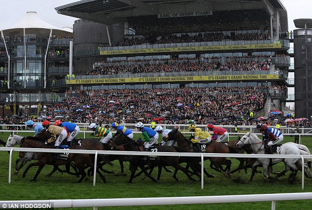 On the run: The Grand National field race past the packed grandstand