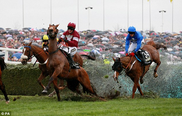 Wet, wet, wet: Quito De La Roque (centre) ridden by Brian O'Connell stumbles badly at the Water Jump