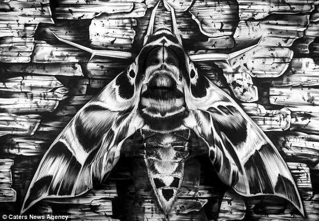 Body art: This incredible picture of a moth has a hidden painted woman camouflaged inside it
