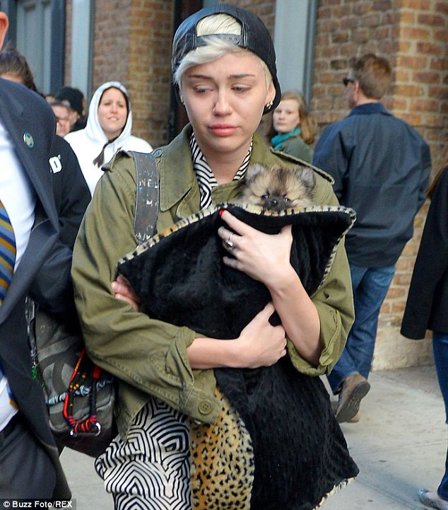 Still grieving: A tearful Miley Cyrus looked pale as she was hurried to a car after leaving her New York hotel on Saturday, clutching her new puppy to her heart
