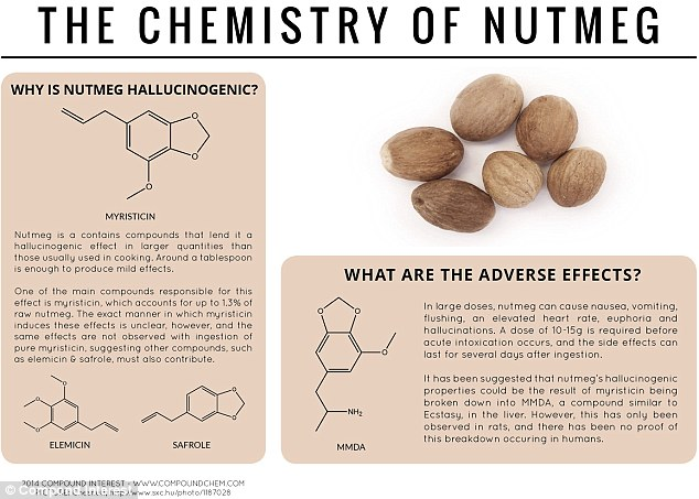 The spice rack psychedelic: Nutmeg has been used as a hallucinogen since the 16th century. Myristicin makes up around one per cent of raw nutmeg and leads to the effect because of the breakdown of the compound in the liver into MMDA, a drug of the amphetamine class and a known psychedelic