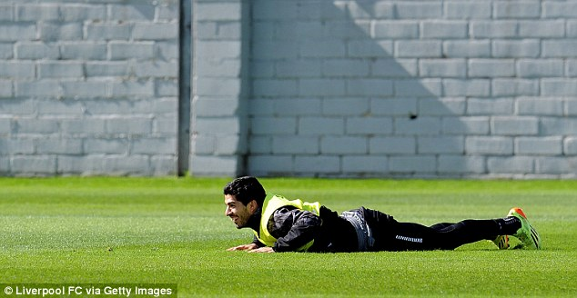 Going to ground: A mischievous-looking Suarez lies face down in the Merseyside sunshine