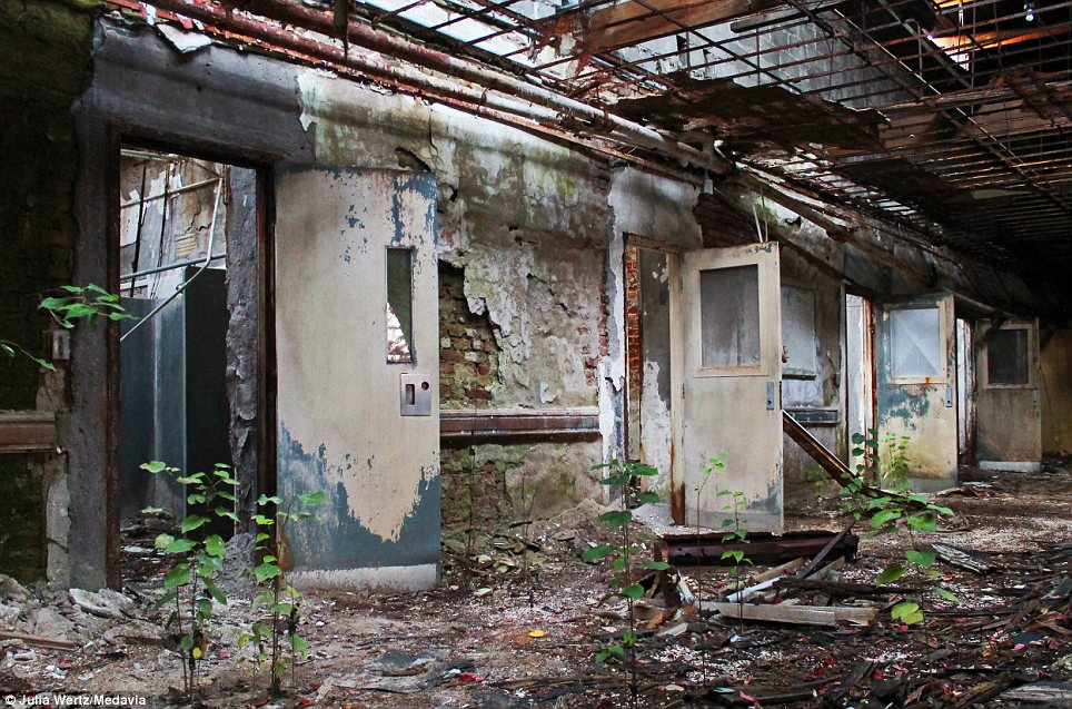 Reclaimed by nature: Weeds have begun to spring up again in the condemned 19th Century buildings. The photos were taken by urban explorer Julia Wertz, 31