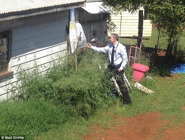 Examining: A detective looks for clues around the neighbourhood