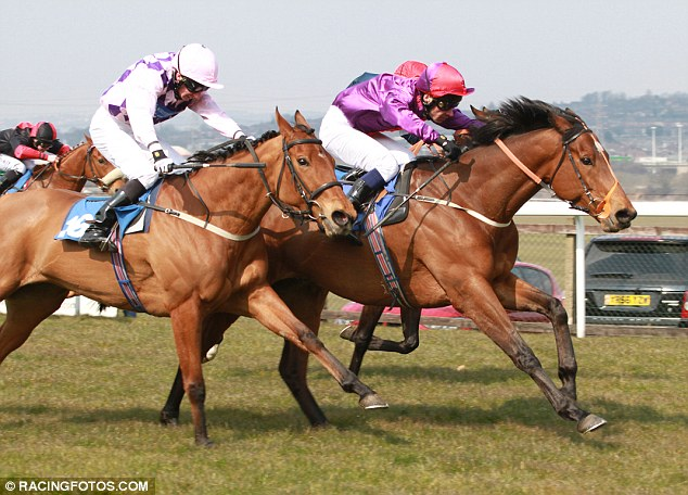 Placepot banker: Dolphin Rock has yet to finish out of the first three in four starts at Pontefract