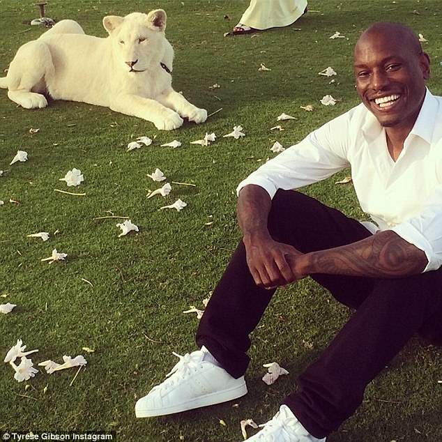 'Not doing much at all..... Just hanging out with White Tigers on the lawn.... #MyDubai': The actor seemed suitably impressed as he held court with the majestic beast