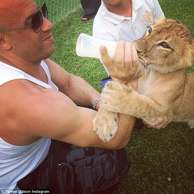 'He's hungry and refuse to let Vins arm leave!! #MyDubai (sic)': The co-stars got acquainted with some rather friendly, furry locals during their downtime