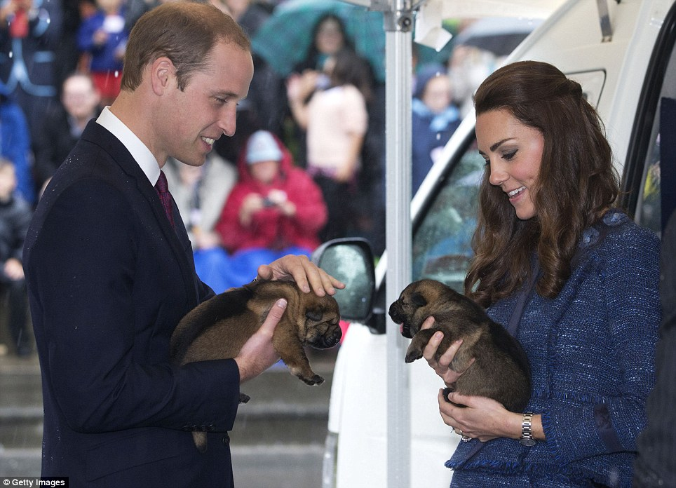 Say hello to my little friend! The couple looked to enjoy their furry meet and greet