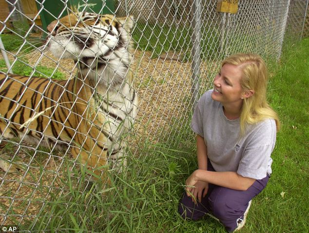 Quist founded the fenced sanctuary in 1999 about 90 miles northeast of Minneapolis and it is now home to more than 100 lions, tigers, cougars and bobcats
