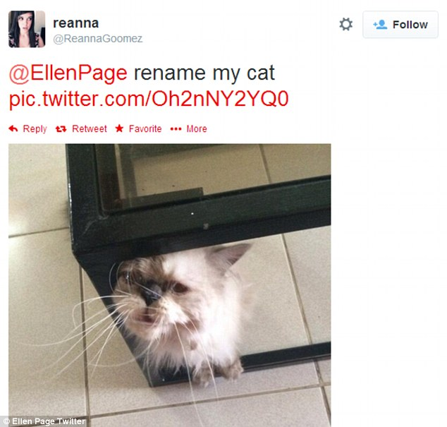 Meow: Ellen also showed she doesn't discriminate between animal species, renaming a fan's cat 'Lawrence'