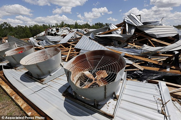 Torn apart: Ventilation fans sit on the ground behind the remains of the Hartness Farms