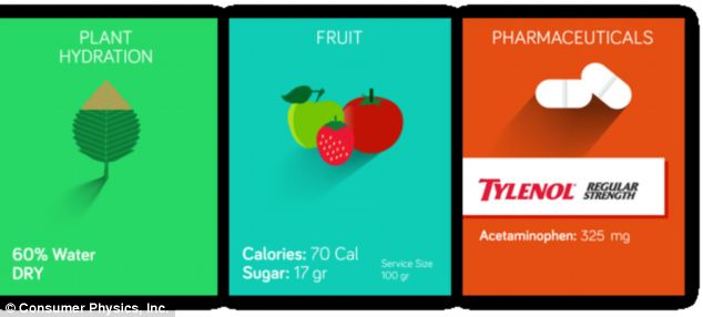 When the product ships to consumers this fall, it will include apps to help users identify the composition of food, medication, and plants.