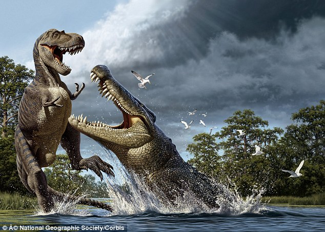 Ferocious: The deinosuchus, which roamed Earth 80 million years ago, was capable of putting dinosaurs such as the albertosaurus in a death roll