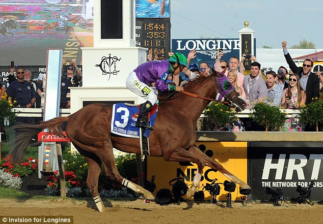 Chasing history: California Chrome, ridden by jockey Victor Espinoza, wins the second leg of the Triple Crown as he runs away with the 139th Preakness Stakes, Saturday, May 17, 2014, in Baltimore, Maryland
