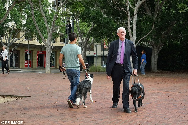Unfair: Legally blind Australian Disability Discrimination Commissioner said he felt like he was under 'curfew' in Brisbane with audible traffic signals switched off overnight