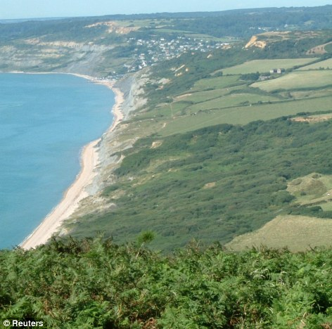 Nearly 200 towers, spanning an area larger than Manchester, are proposed just nine miles off Dorset's unique Jurassic Coast