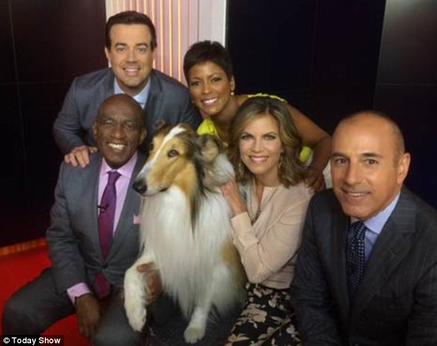 Furry friend: The Today Show's fleet of hosts pose with Lassie - the tenth generational descendant of the film original