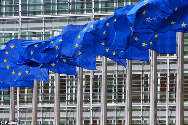 Flagging up concerns: The European Commission produced guidance for each EU country