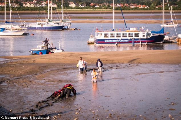 Stranded: A mother and her two sons had to be rescued after they became stuck in mud up to their waists at Conwy in North Wales
