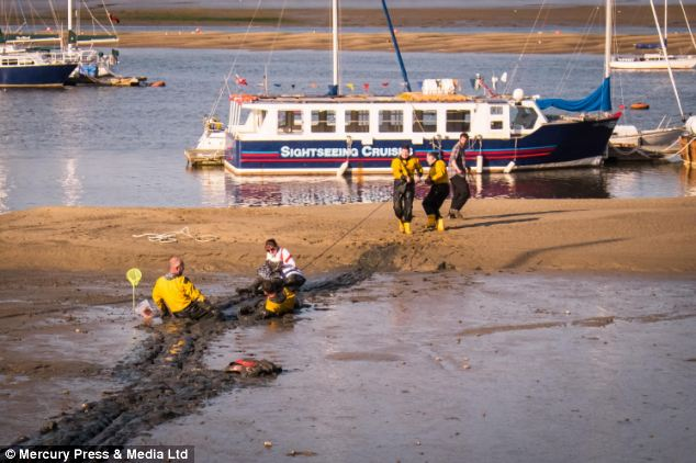Spotted: Onlookers saw the mother, in her 30s, and her two boys, aged eight and ten, begin sinking into the mud, before they were spotted by a member of a nearby lifeboat crew