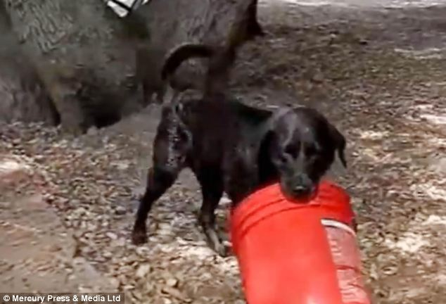 The video features Charcoal as he was filmed in a range of locations playing with the bucket