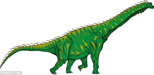 Sauropods such as Brachiosaurus (pictured) and Isisaurus are included in the family tree as well as Diplodocus and Apatosaurus (formerly known as Brontosaurus)