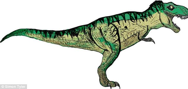Later therapods on the poster include the most well-known large carnivorous dinosaurs including Tyrannosaurus (pictured) Giganotosaurus and Spinosaurus