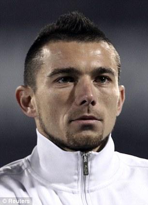 Delivery: Croatia's Danijel Pranjic can provide dangerous crosses into the Brazil box