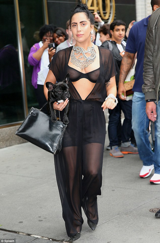 All black everything: Lady Gaga wore a sheer black bra as she carried her black French Bulldog Asia under her arm as perhaps the cutest part of the outfit as she strolled through New York City on Thursday