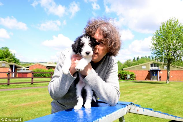 Worthwhile: Alan is happy working on Dog Rescuers and says the show highlights the 'excellent' work of the RSPCA