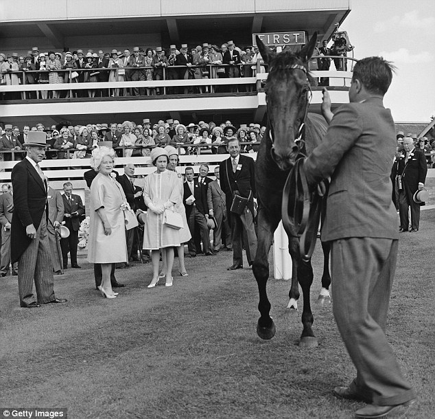 Royal steed: The Queen gives Hopeful Venture a once over following his win in the Harwicke Stakes in 1968