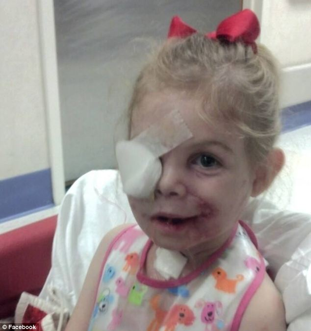 Getting better: She is expected to undergo several more surgeries in the future as she heals from the attack