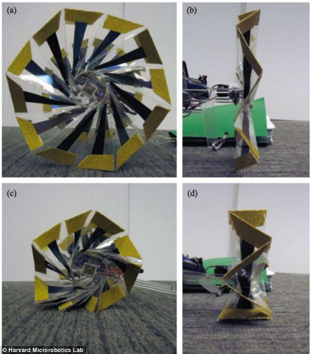 Scientists at Harvard Microrobotics Lab teamed up with the group in Seoul to design origami wheels that automatically expand (pictured a and b) and shrink (pictured c and d) to enable the robot to be both fast and strong. An earlier design is pictured
