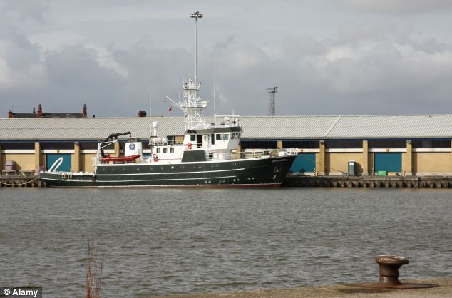 Past its heyday: Today there are just five trawlers  operating out of Grimsby - a third of the number of boats servicing off-shore wind farms in the Humber Estuary. Pictured is a fishing trawler at Grimsby docks in 2008
